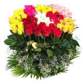Antalya Melisa çiçek mağazası , çiçekçi adresleri  51 adet renkli güllerden aranjman tanzimi