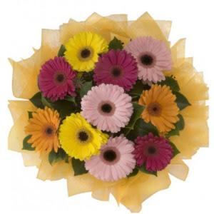 Antalya Melisa Melisa İnternetten çiçek siparişi  11 adet karışık gerbera çiçeği buketi