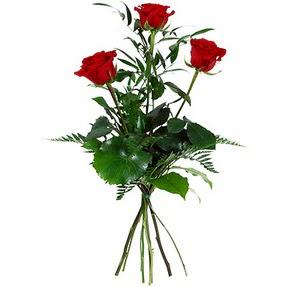 Antalya Melisa uluslararası çiçek gönderme  3 adet kırmızı gülden buket