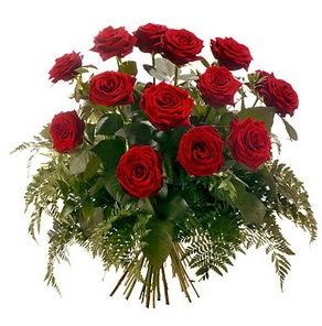 Antalya Melisa internetten çiçek satışı  15 adet kırmızı gülden buket