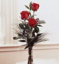 Antalya Melisa internetten çiçek satışı  Vazoda 3 adet güzel gül