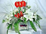 Antalya Melisa çiçek mağazası , çiçekçi adresleri  Anthurim Kazablanka  gül
