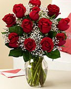 Sevgilime hediye 9 adet 1.ci kalite gül  Antalya Melisa anneler günü çiçek yolla