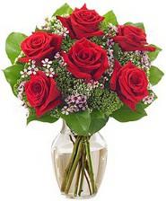 Kız arkadaşıma hediye 6 kırmızı gül  Antalya Melisa internetten çiçek siparişi