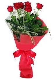 Çiçek yolla sitesinden 7 adet kırmızı gül  Antalya Melisa internetten çiçek satışı