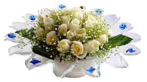 Antalya Melisa çiçek online çiçek siparişi  11 adet Beyaz güller özel cam tanzim