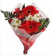 Mevsim çiçeklerinden görsel buket  Antalya Melisa çiçekçiler