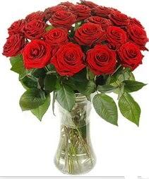 Antalya Melisa çiçek mağazası , çiçekçi adresleri  Vazoda 15 adet kırmızı gül tanzimi