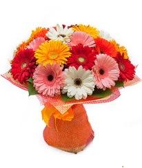 Renkli gerbera buketi  Antalya Melisa anneler günü çiçek yolla