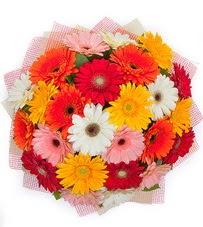 15 adet renkli gerbera buketi  Antalya Melisa yurtiçi ve yurtdışı çiçek siparişi