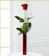 Vazo içerisinde 1 adet kırmızı gül  Antalya Melisa internetten çiçek siparişi