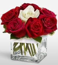 Tek aşkımsın çiçeği 8 kırmızı 1 beyaz gül  Antalya Melisa uluslararası çiçek gönderme