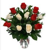 Vazo içerisinde 6 kırmızı 6 beyaz gül  Antalya Melisa hediye çiçek yolla
