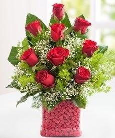 Cam içerisinde 9 adet kırmızı gül  Antalya Melisa internetten çiçek satışı