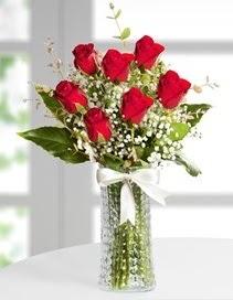 Cam vazoda 7 adet kırmızı gül  Antalya Melisa çiçek , çiçekçi , çiçekçilik