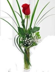 Cam içerisinde 1 kırmızı gül  Antalya Melisa çiçek gönderme sitemiz güvenlidir