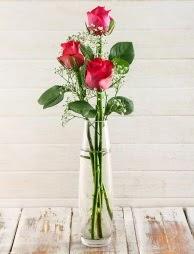 Cam içerisinde 3 kırmızı gül  Antalya Melisa çiçek satışı