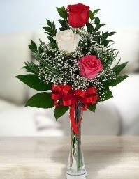Camda 2 kırmızı 1 beyaz gül  Antalya Melisa ucuz çiçek gönder
