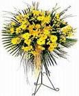 Antalya Melisa yurtiçi ve yurtdışı çiçek siparişi  Sari kazablanka Ferforje