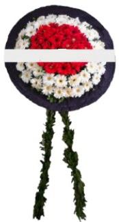 mozele çiçeği  Antalya Melisa hediye sevgilime hediye çiçek