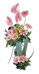 Antalya Melisa güvenli kaliteli hızlı çiçek  Pembe Antoryum Harikalar Rüyasi