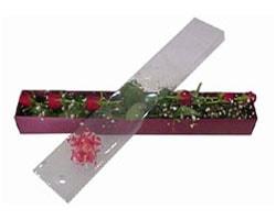 Antalya Melisa anneler günü çiçek yolla   6 adet kirmizi gül kutu içinde