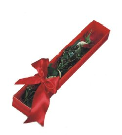 Antalya Melisa çiçek online çiçek siparişi  tek kutu gül sade ve sik