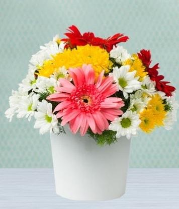Seramik Vazoda Gelbera ve Papatya  Antalya Melisa çiçek gönderme