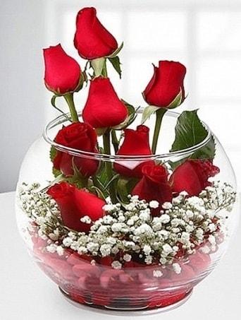 Kırmızı Mutluluk fanusta 9 kırmızı gül  Antalya Melisa çiçek siparişi sitesi