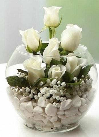 Beyaz Mutluluk 9 beyaz gül fanusta  Antalya Melisa çiçek siparişi sitesi