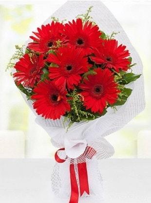 Kırmızı Gelbera Buketi  Antalya Melisa internetten çiçek siparişi