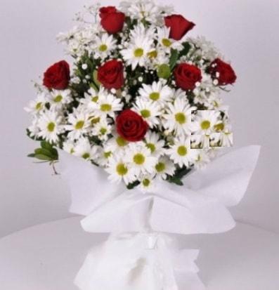 7 adet kırmızı gül ve papatyalar krizantem  Antalya Melisa internetten çiçek satışı