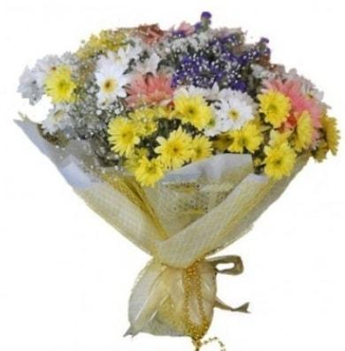 Karışık mevsim çiçeği  Antalya Melisa çiçek satışı