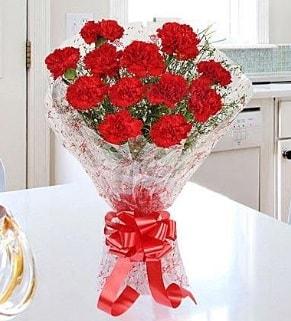 12 adet kırmızı karanfil buketi  Antalya Melisa Melisa İnternetten çiçek siparişi