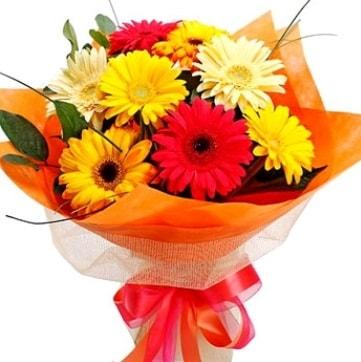 9 adet karışık gerbera buketi  Antalya Melisa çiçek , çiçekçi , çiçekçilik