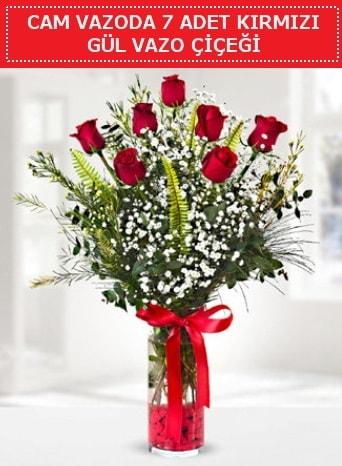 Cam vazoda 7 adet kırmızı gül çiçeği  Antalya Melisa çiçek gönderme sitemiz güvenlidir