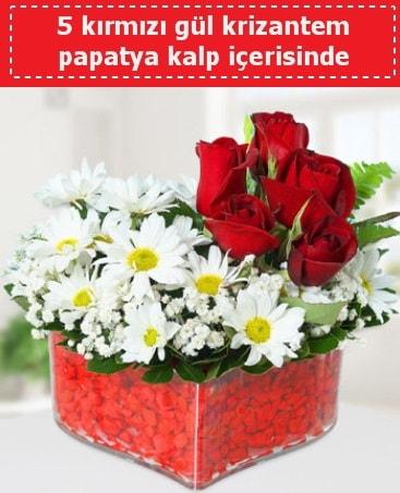 mika kalp içerisinde 5 kırmızı gül papatya  Antalya Melisa çiçek gönderme
