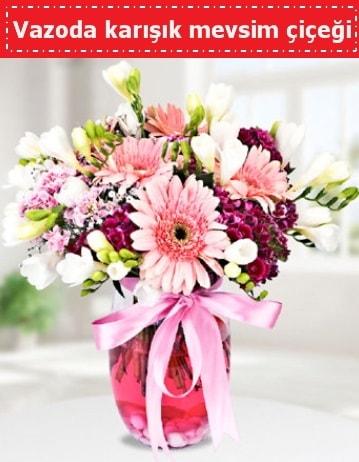 Vazoda karışık mevsim çiçeği  Antalya Melisa çiçek , çiçekçi , çiçekçilik