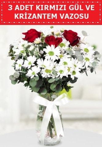 3 kırmızı gül ve camda krizantem çiçekleri  Antalya Melisa çiçek gönderme