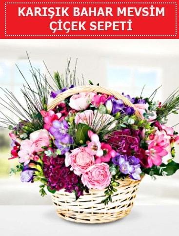 Karışık mevsim bahar çiçekleri  Antalya Melisa ucuz çiçek gönder
