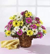 Antalya Melisa çiçekçiler  Mevsim çiçekleri sepeti